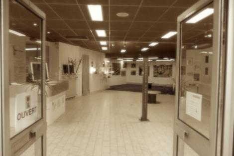 Paulove présente six réalisations à la galerie Chercheur d'artistes.
